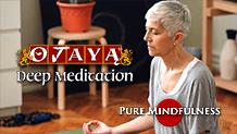 Pure Mindfulness Meditation